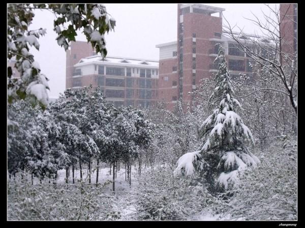 山东师范大学图片4