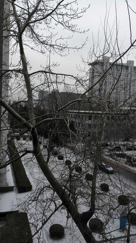 北京师范大学校园风光1