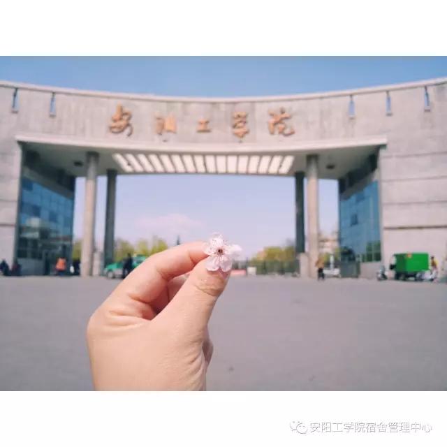 安阳工学院校园风光5