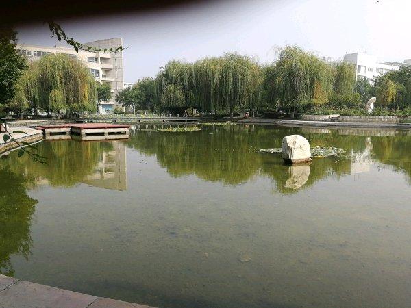 河北金融学院校园风光4