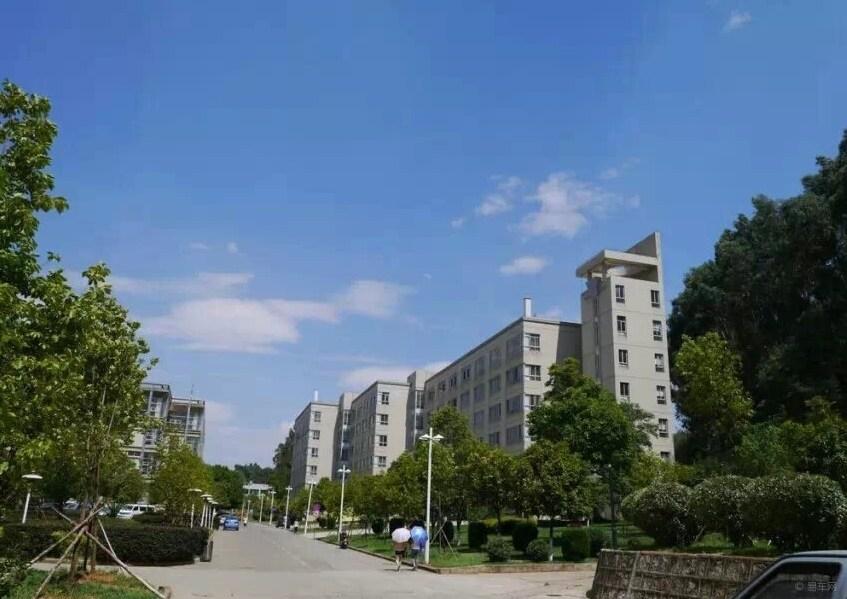 西南林业大学校园风光3