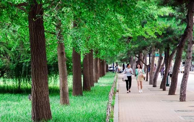 中国人民大学校园风光5