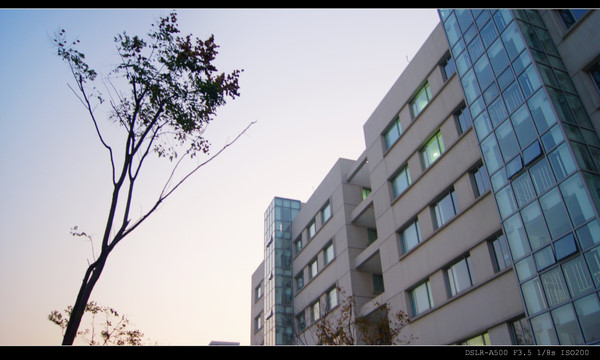 上海第二工业大学校园风光1