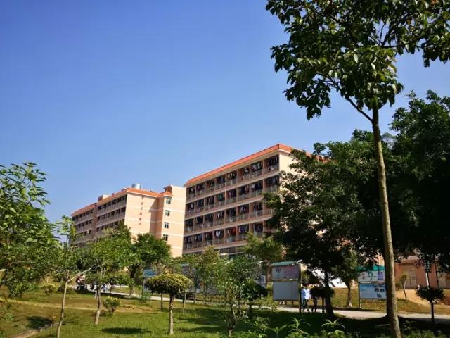 广州东华职业学院校园风光1