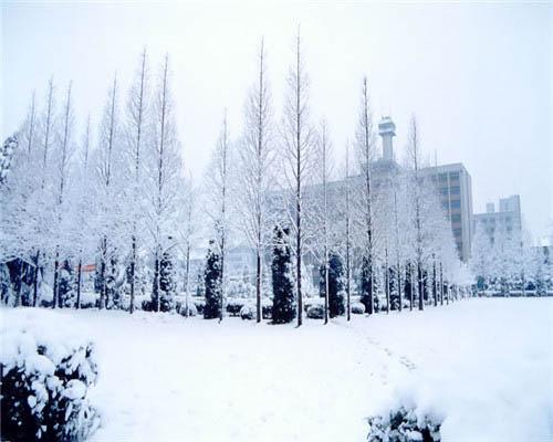 南京信息工程大学(中外合作办学专业)校园风光5