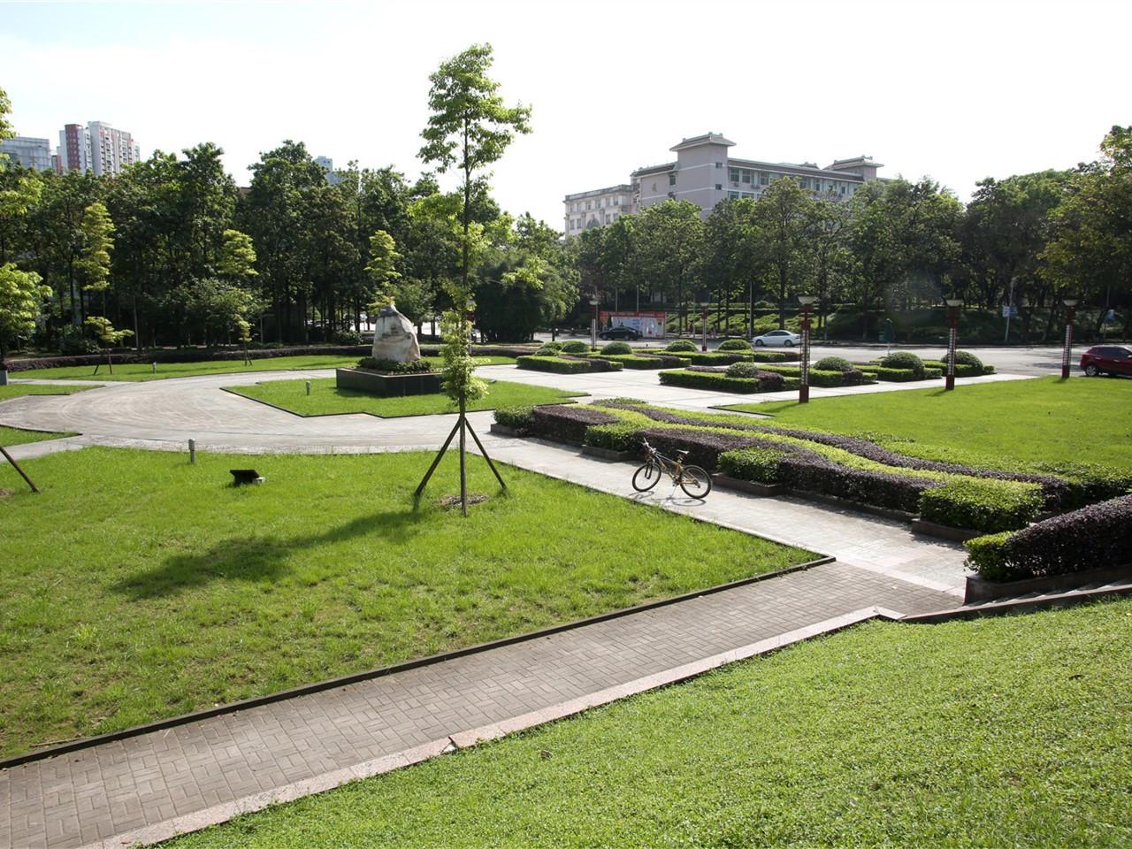陆军军医大学校园风景4