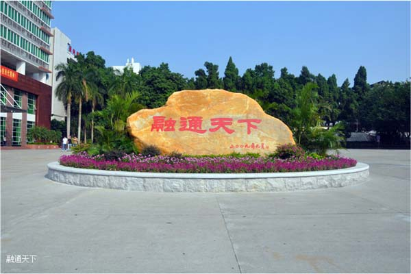 广东金融学院(中外合作办学专业)2