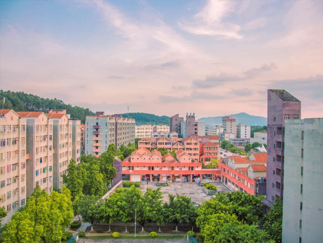 广东培正学院校园风光7