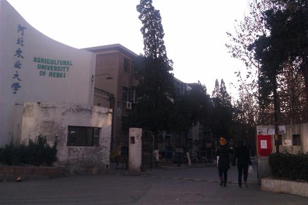 河北农业大学校园风光2
