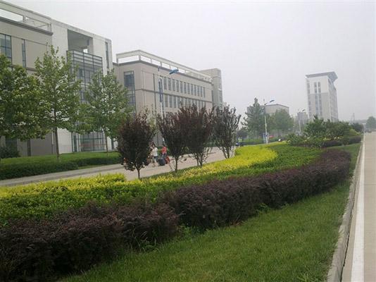 沧州师范学院校园风光5