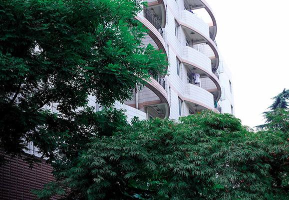 上海健康医学院校园风光5