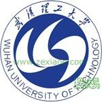 武汉理工大学(中外合作办学专业)