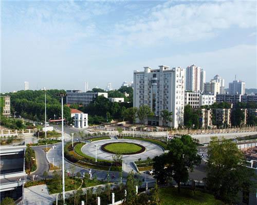 武汉理工大学(中外合作办学专业)校园风光4