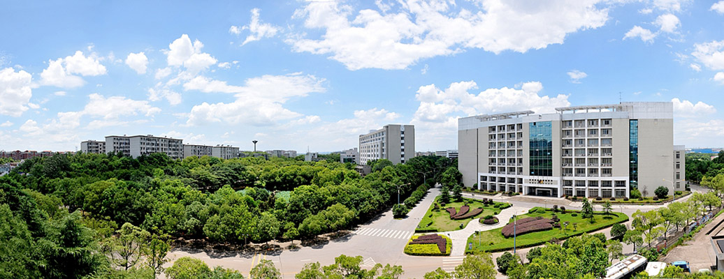 湖南科技大学(中外合作办学专业)2