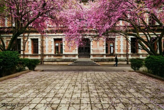 云南大学3