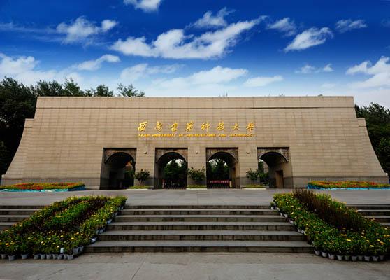 西安建筑科技大学(中外合作办学专业)1