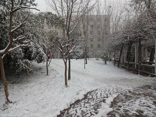 漯河职业技术学院校园风光2