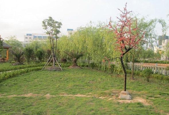 江西医学高等专科学校校园风光2