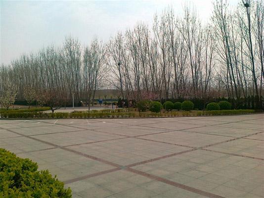 郑州工程技术学院校园风光2