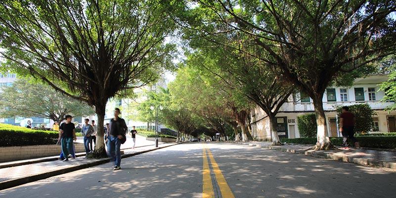广东石油化工学院(与广东轻工职业技术学院联合办学)校道