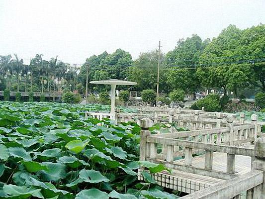 广西农业职业技术学院校园风光2