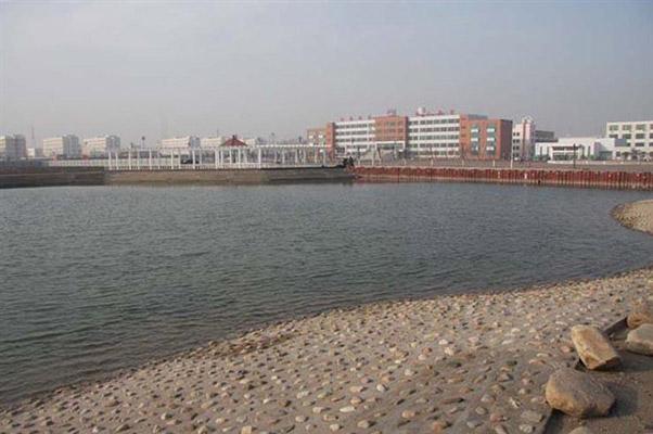 天津滨海职业学院校园风光4