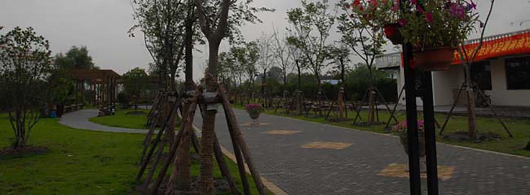 上海城建职业学院校园风光3