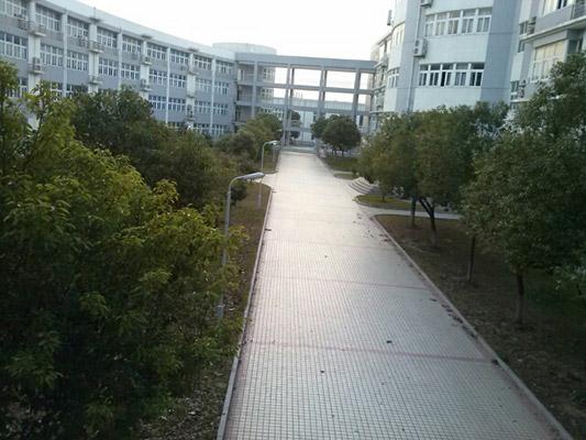 上海电子信息职业技术学院校园风光1