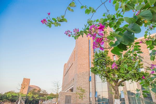 广东东软学院图书馆一角