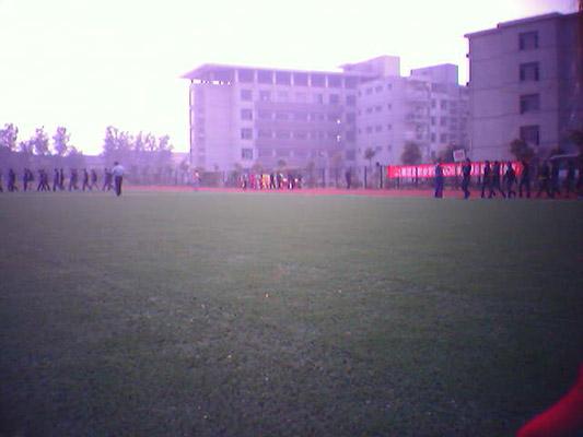 上海震旦职业学院校园风光2