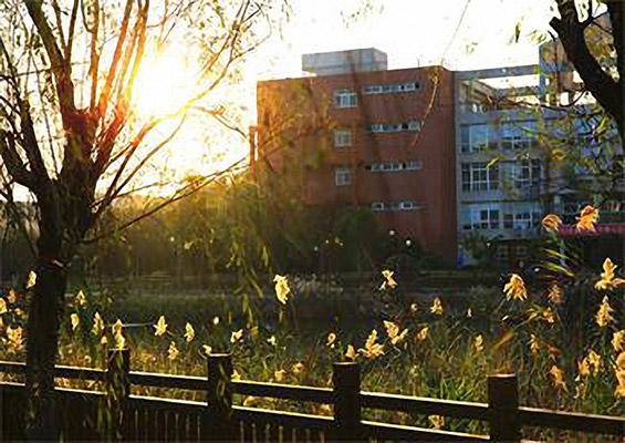 上海思博职业技术学院校园风光4
