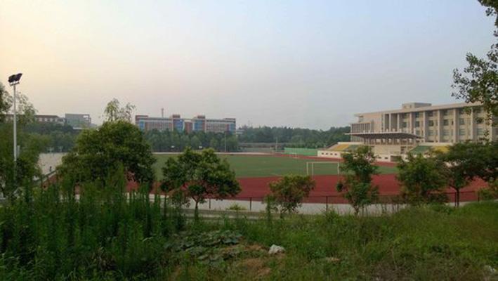 郑州科技学院1