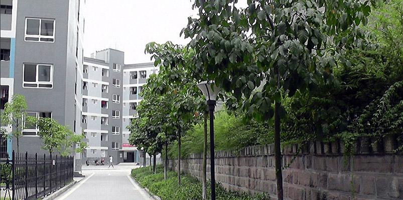 重庆城市管理职业学院校园风光2