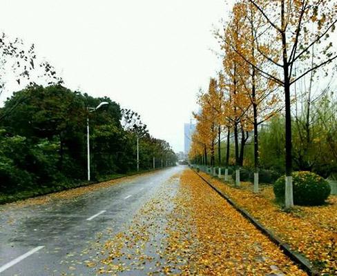 南京科技职业学院校园风光2