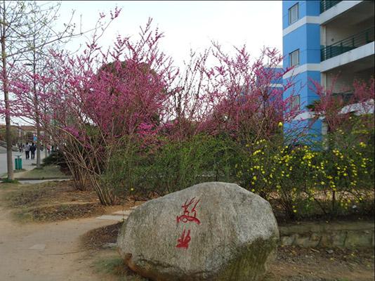 武汉软件工程职业学院校园风光2