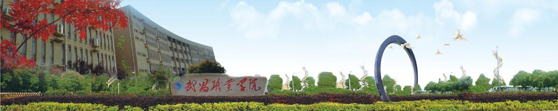 武昌职业学院4