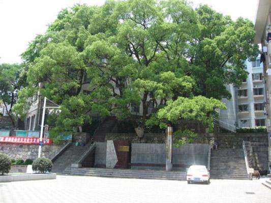 湖南艺术职业学院校园风光2
