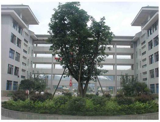雅安职业技术学院校园风光4