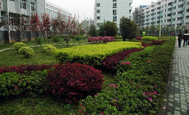 武汉工业职业技术学院校园风光1