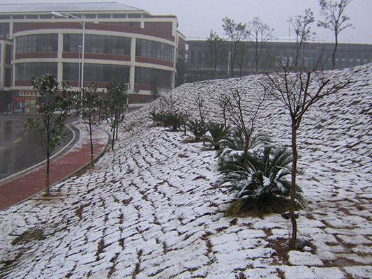 湖南软件职业学院校园风光4