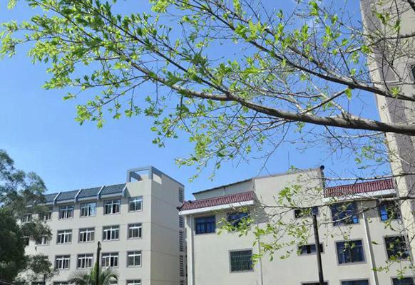厦门兴才职业技术学院校园风光2