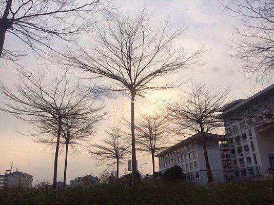 广西幼儿师范高等专科学校校园风光4
