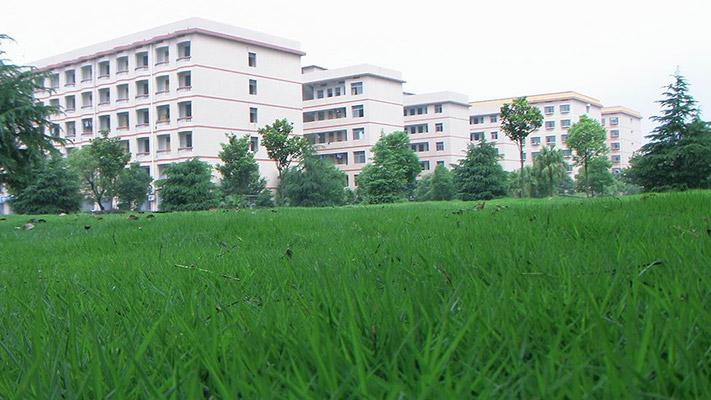 湖南工商职业学院校园风光4