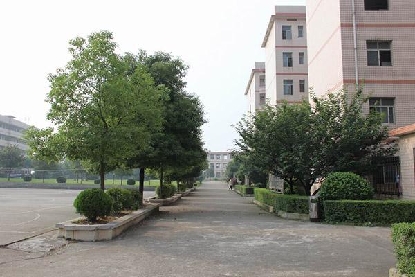 湖南工商职业学院校园风光5