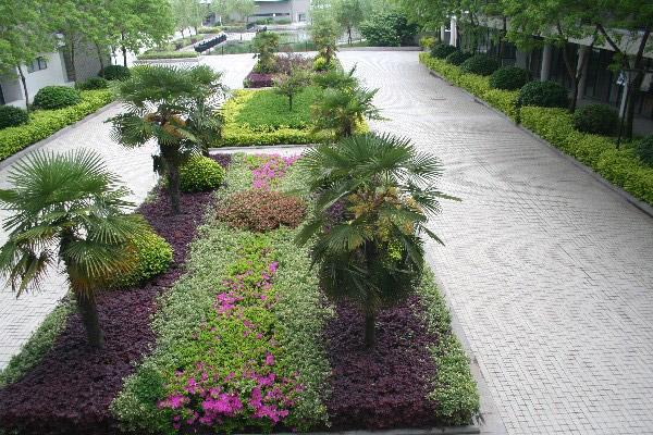 扬州中瑞酒店职业学院校园风光1
